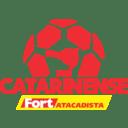 Logo: Catarinense Série A