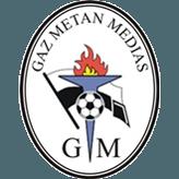FC Botoşani - Gaz Metan. Visând la play off - Liga ...  |Gaz Metan-botoşani